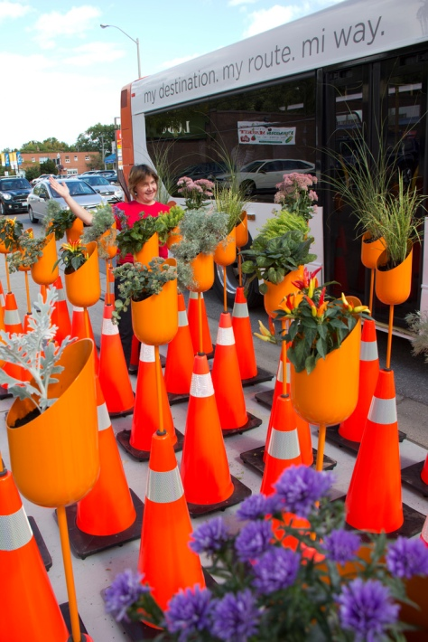 Garden Oasis with Safety Cones by Susan Campbell